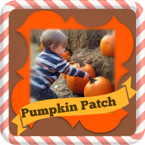 Magical Pumpkin Patch